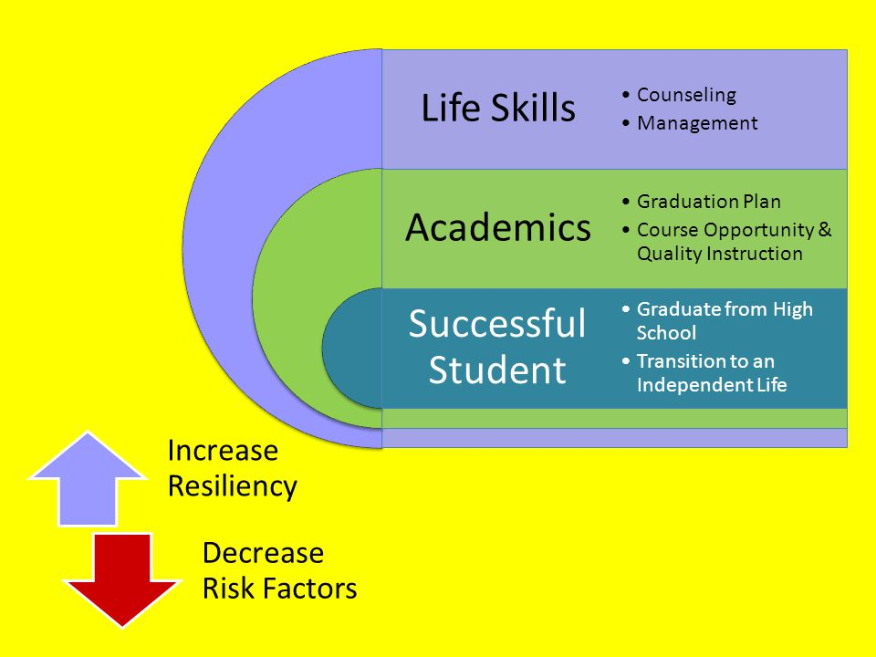 Increase Resiliency Decrease Risk Factors Life Skills Academics Successful Student Counseling Management Graduation Plan Course Opportunity & Quality Instruction Graduate from High School Transition to an Independent Life