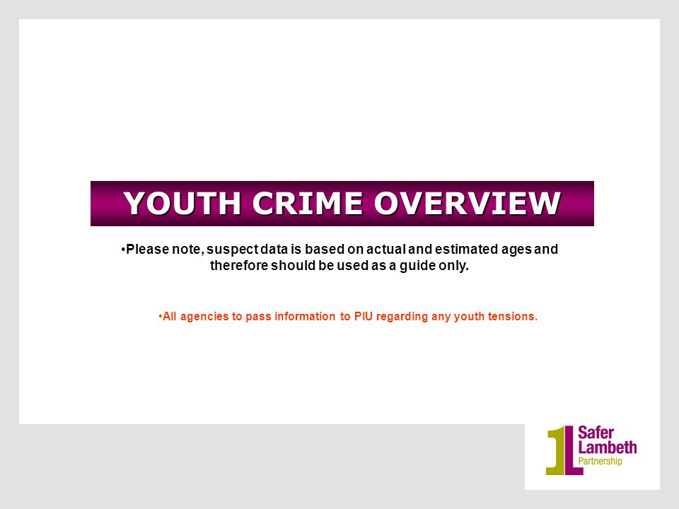 YOUTH CRIME OVERVIEW Please note, suspect data is based on actual and estimated ages and therefore should be used as a guide only.