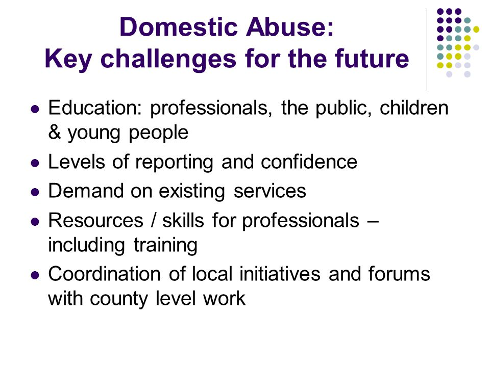 Domestic Abuse: Key challenges for the future Education: professionals, the public, children & young people Levels of reporting and confidence Demand on existing services Resources / skills for professionals – including training Coordination of local initiatives and forums with county level work