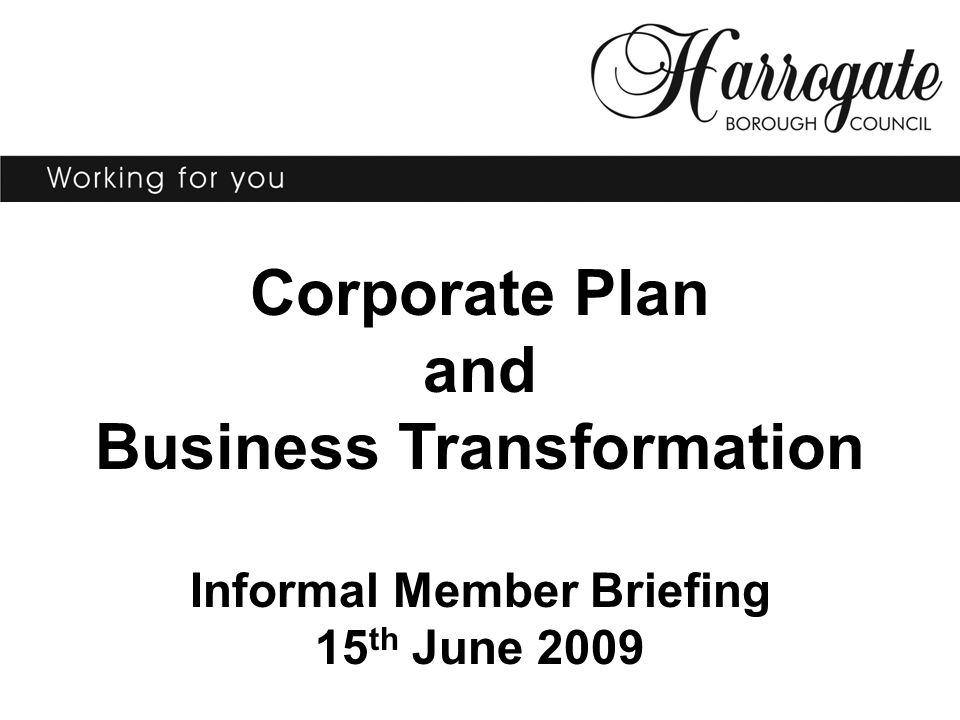 Corporate Plan and Business Transformation Informal Member Briefing 15 th June 2009