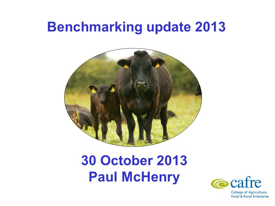 CAFRE Benchmarking Approximately 450 businesses benchmarked/year.