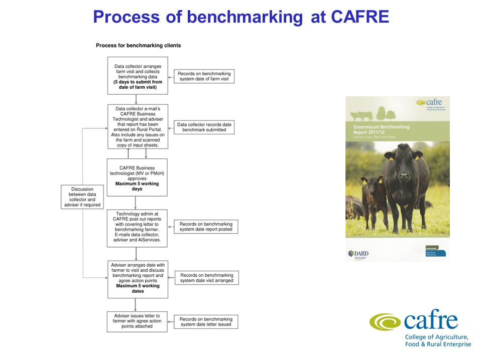 Process of benchmarking at CAFRE