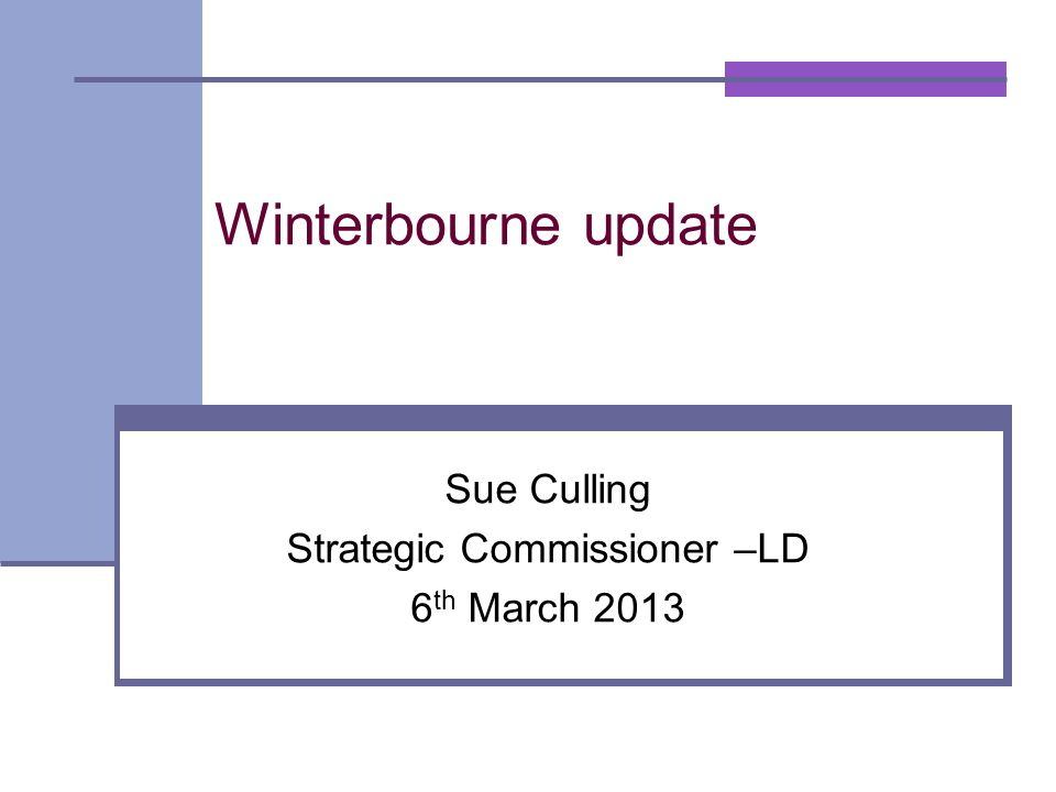 Winterbourne update Sue Culling Strategic Commissioner –LD 6 th March 2013