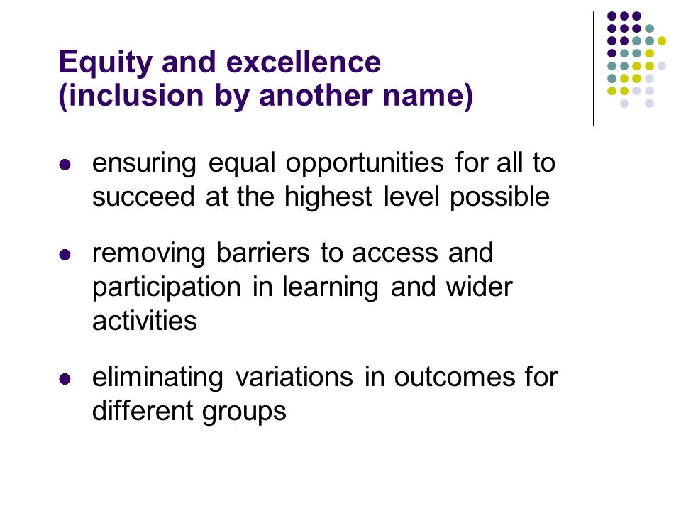 Equity and excellence (inclusion by another name) ensuring equal opportunities for all to succeed at the highest level possible removing barriers to access and participation in learning and wider activities eliminating variations in outcomes for different groups