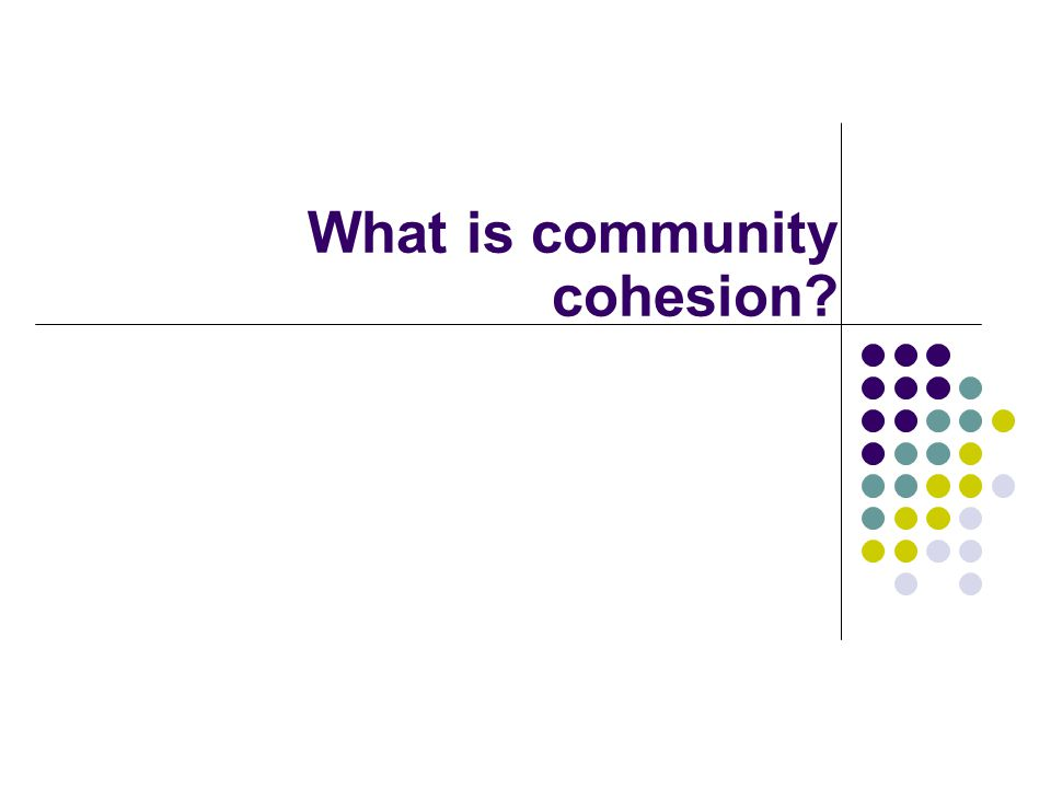 What is community cohesion