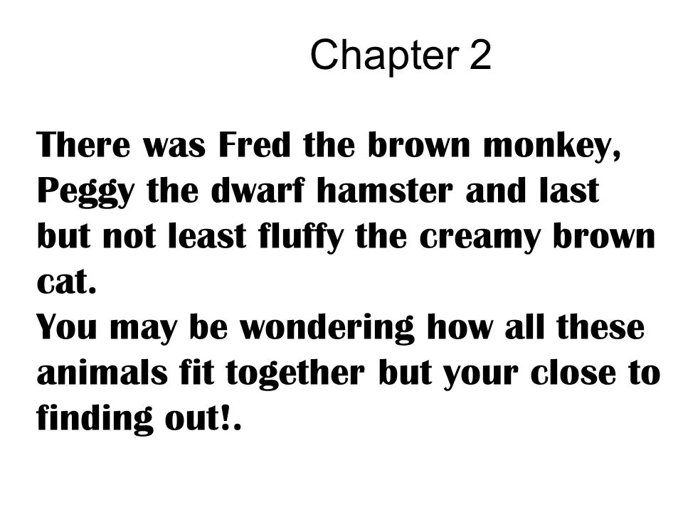 Chapter 2 There was Fred the brown monkey, Peggy the dwarf hamster and last but not least fluffy the creamy brown cat. You may be wondering how all th