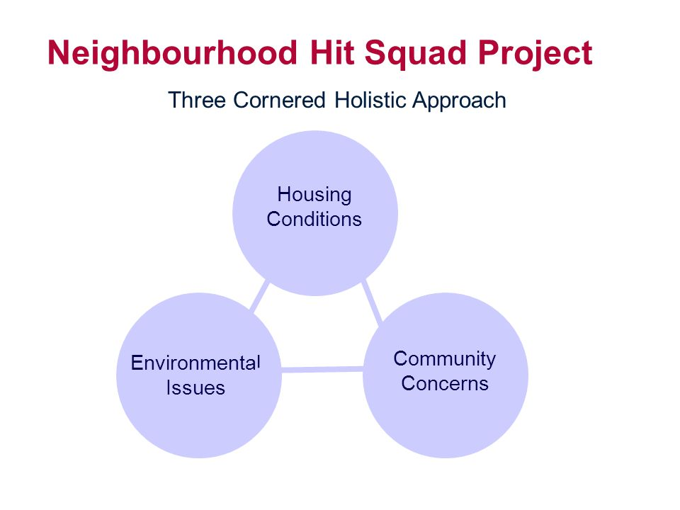Neighbourhood Network Model Agencies that continually communicate with residents.