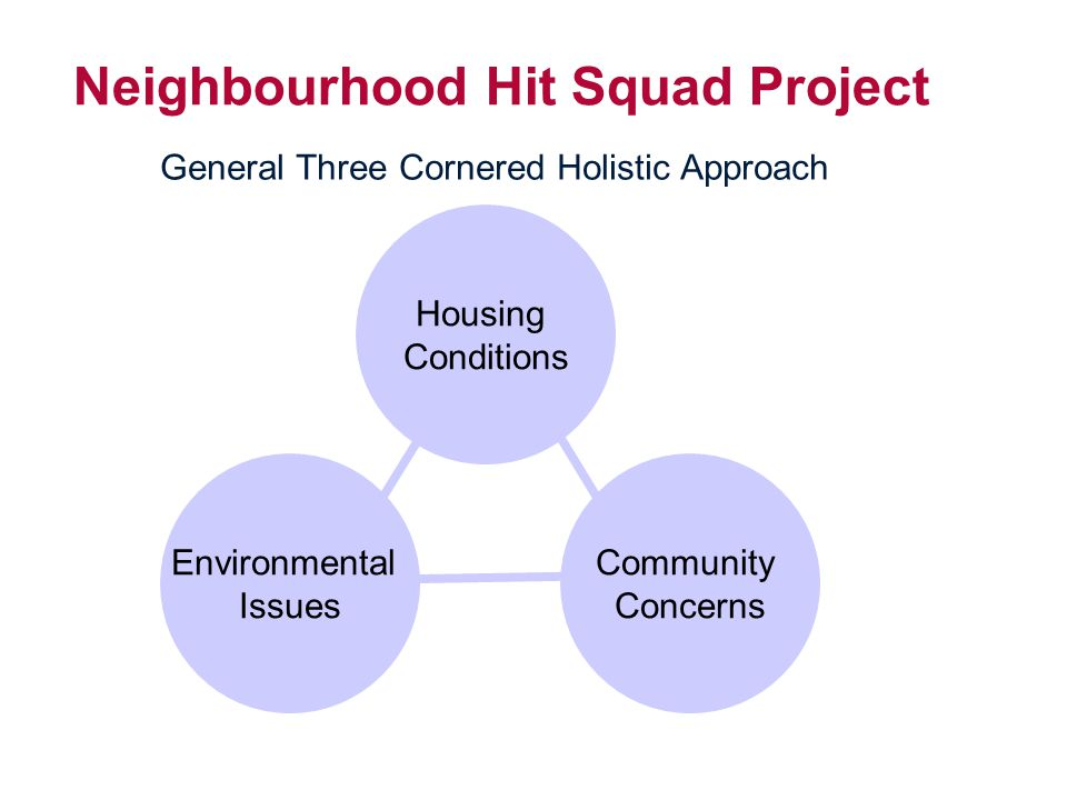 Neighbourhood Hit Squad Project General Three Cornered Holistic Approach Housing Conditions Housing Conditions Environmental Issues Community Concerns