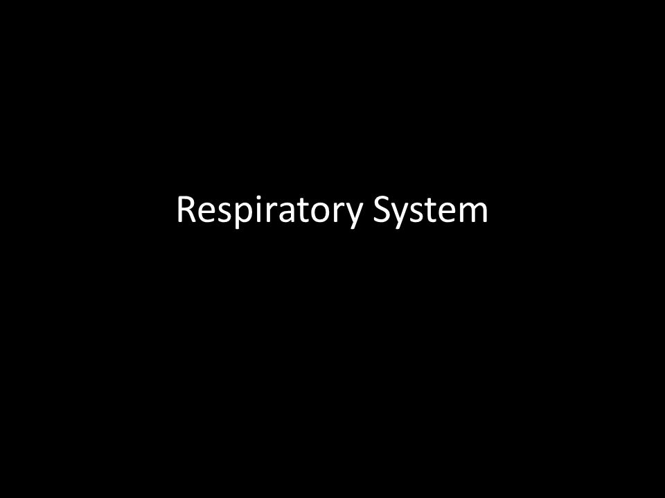 Which form of respiration is characterized by the following.