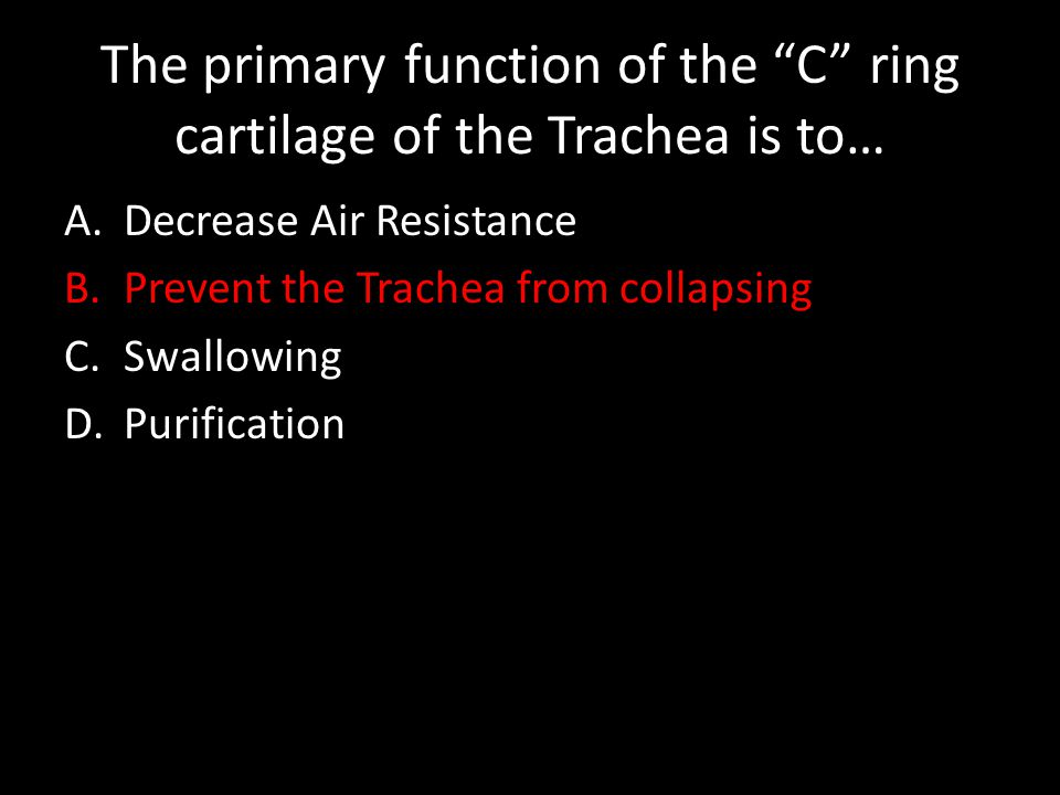 The primary function of the C ring cartilage of the Trachea is to… A.Decrease Air Resistance B.Prevent the Trachea from collapsing C.Swallowing D.Purification
