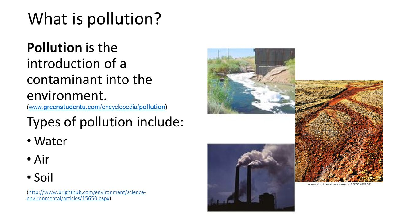 What is pollution? Pollution is the introduction of a contaminant into the environment. (www.greenstudentu.com/encyclopedia/pollution)www.greenstudent