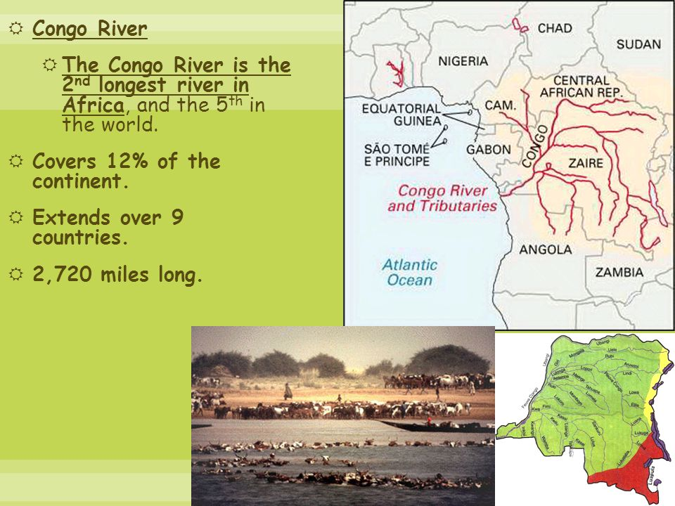 Congo River  The Congo River is the 2 nd longest river in Africa, and the 5 th in the world.
