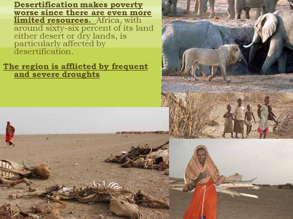 Desertification makes poverty worse since there are even more limited resources.