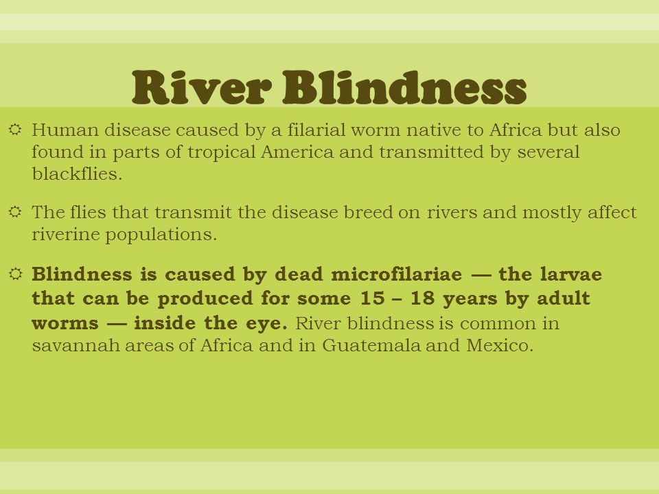  Human disease caused by a filarial worm native to Africa but also found in parts of tropical America and transmitted by several blackflies.