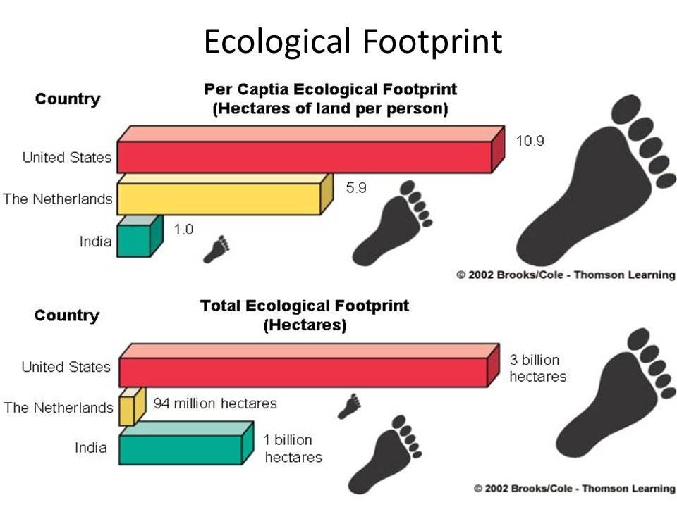 10/12/201424 Ecol Ecological Footprint Fig. 1-8 p. 10