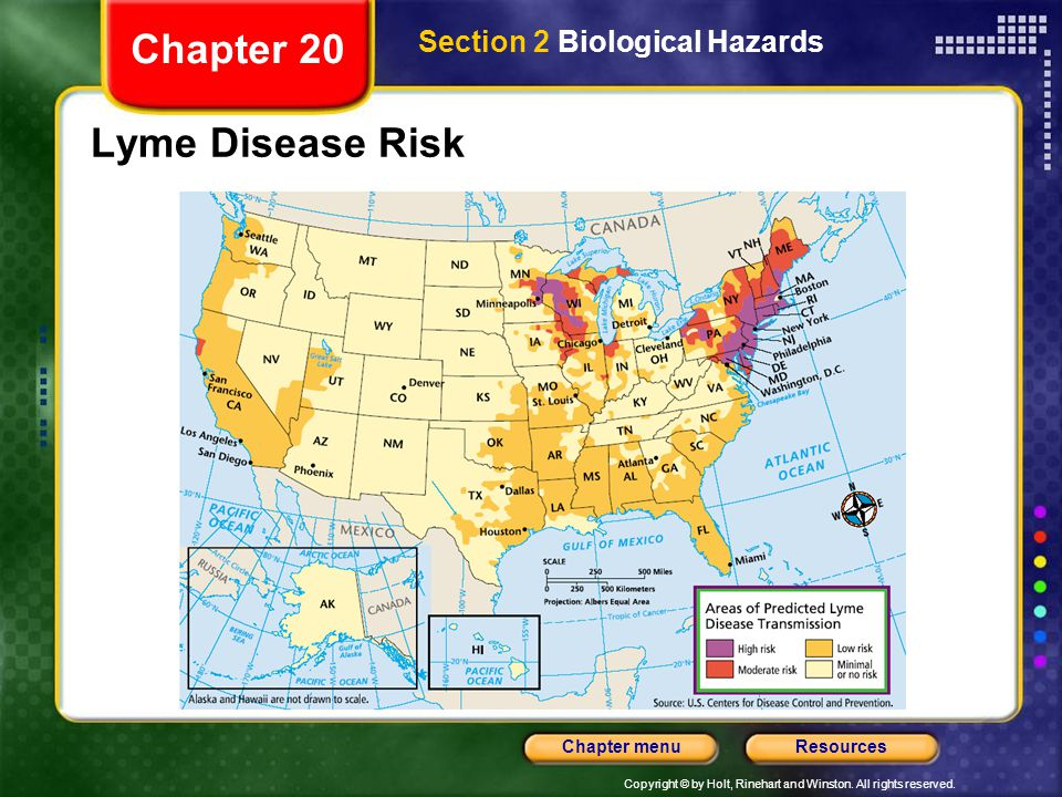 Copyright © by Holt, Rinehart and Winston. All rights reserved. ResourcesChapter menu Lyme Disease Risk Chapter 20 Section 2 Biological Hazards
