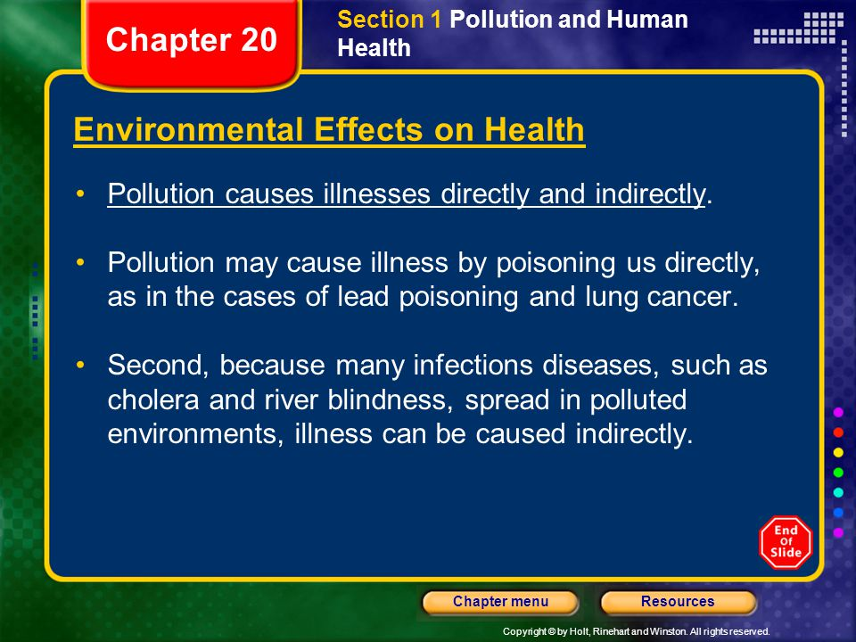 Copyright © by Holt, Rinehart and Winston. All rights reserved. ResourcesChapter menu Section 1 Pollution and Human Health Environmental Effects on He