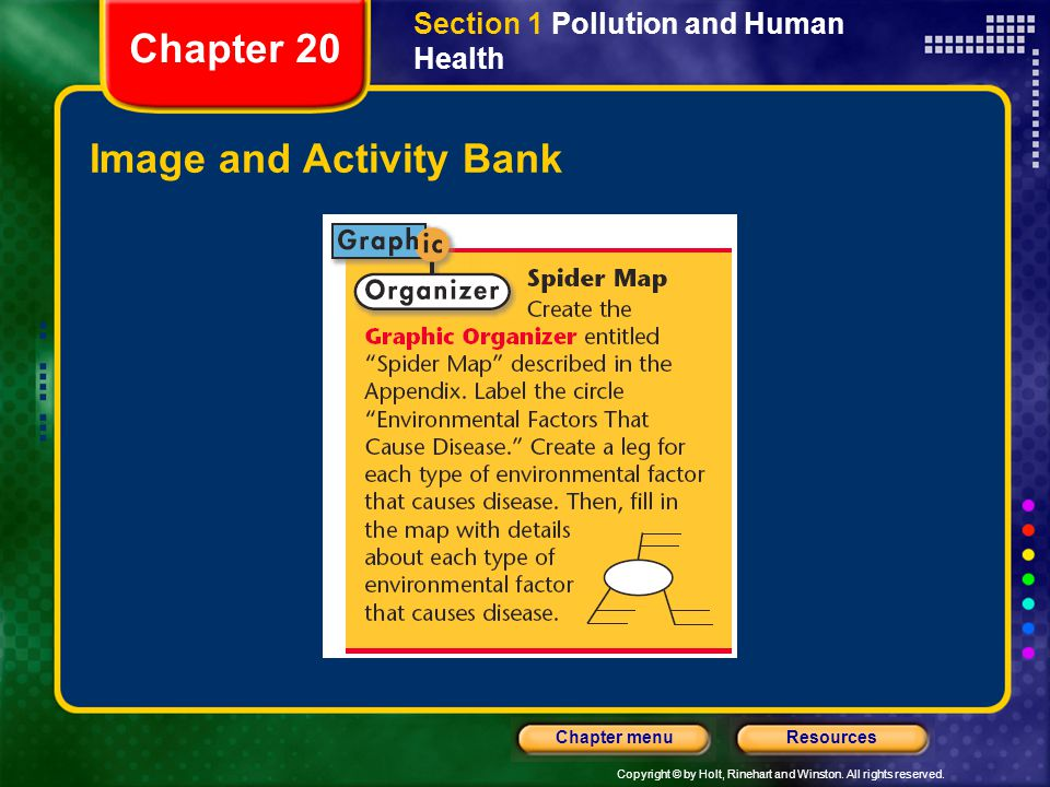 Copyright © by Holt, Rinehart and Winston. All rights reserved. ResourcesChapter menu Image and Activity Bank Section 1 Pollution and Human Health Cha