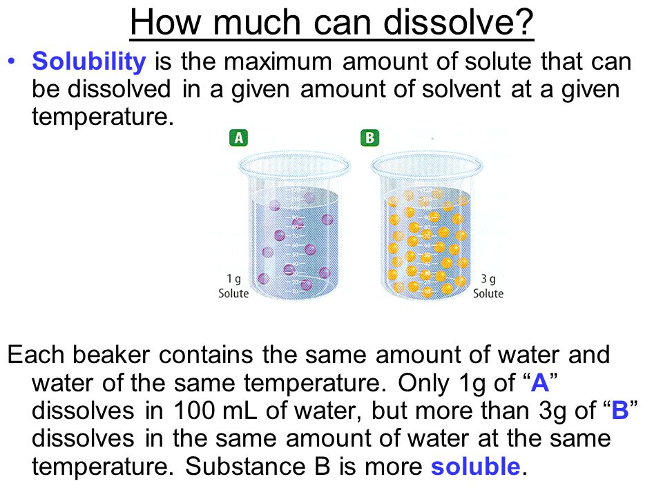 How much can dissolve? Solubility is the maximum amount of solute that can be dissolved in a given amount of solvent at a given temperature. Each beak