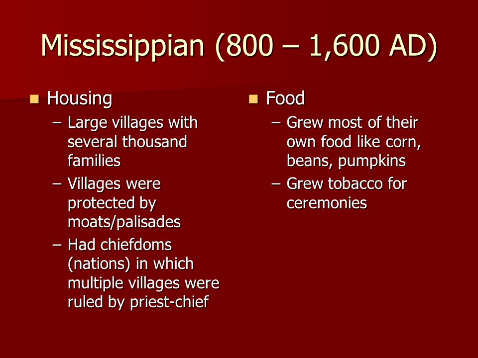 Mississippian (800 – 1,600 AD) Housing Housing –Large villages with several thousand families –Villages were protected by moats/palisades –Had chiefdo