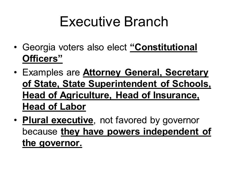 "Executive Branch Georgia voters also elect ""Constitutional Officers"" Examples are Attorney General, Secretary of State, State Superintendent of School"