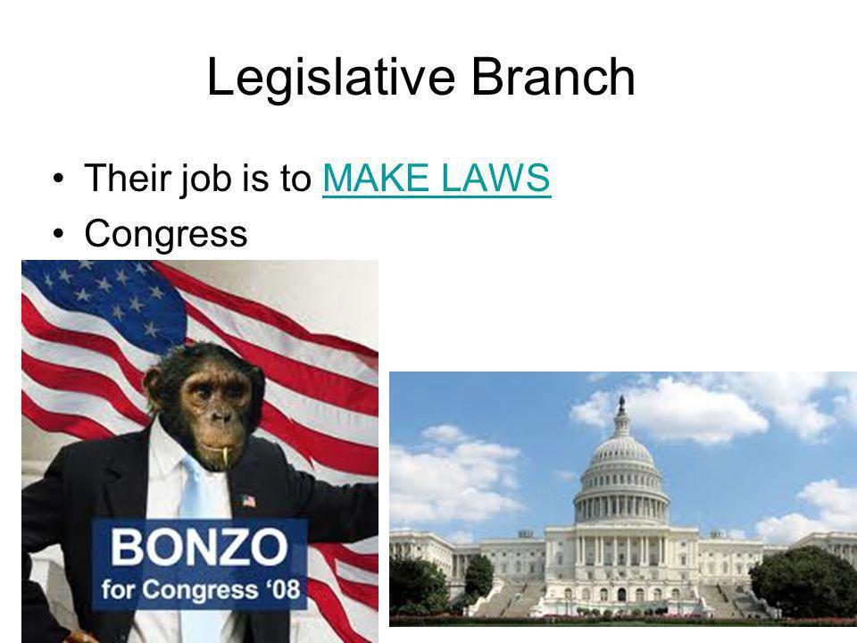Legislative Branch Congress has 2 houses: (Bi-Cameral) Senate andHouse of Representatives There are 2 Senators from each state, 100 total.