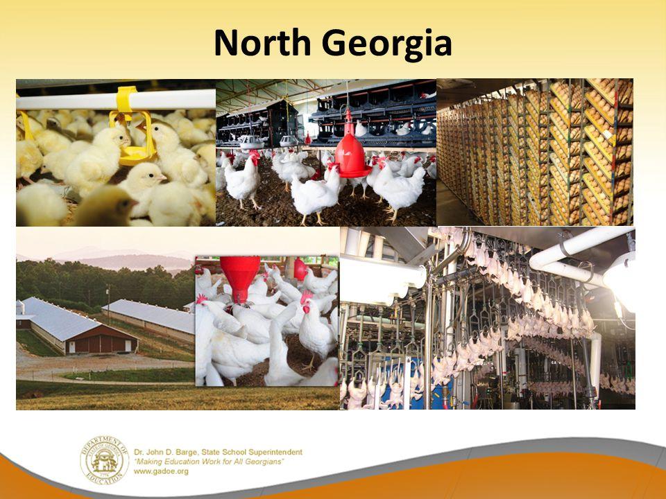 North Georgia