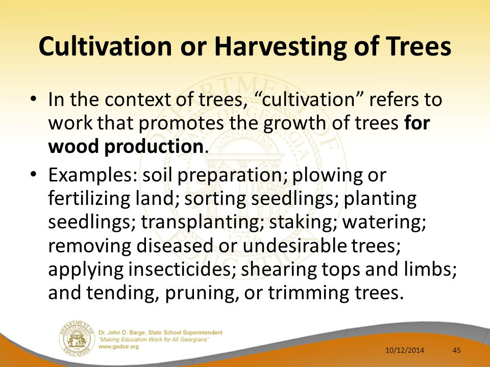 Cultivation or Harvesting of Trees In the context of trees, cultivation refers to work that promotes the growth of trees for wood production.