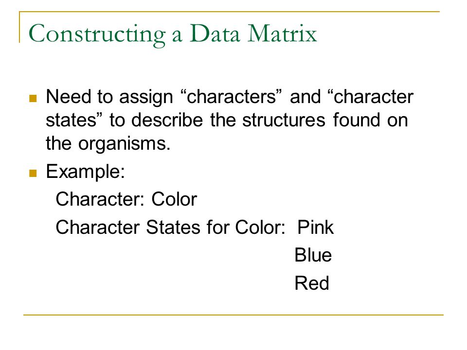 Constructing a Data Matrix Need to assign characters and character states to describe the structures found on the organisms.