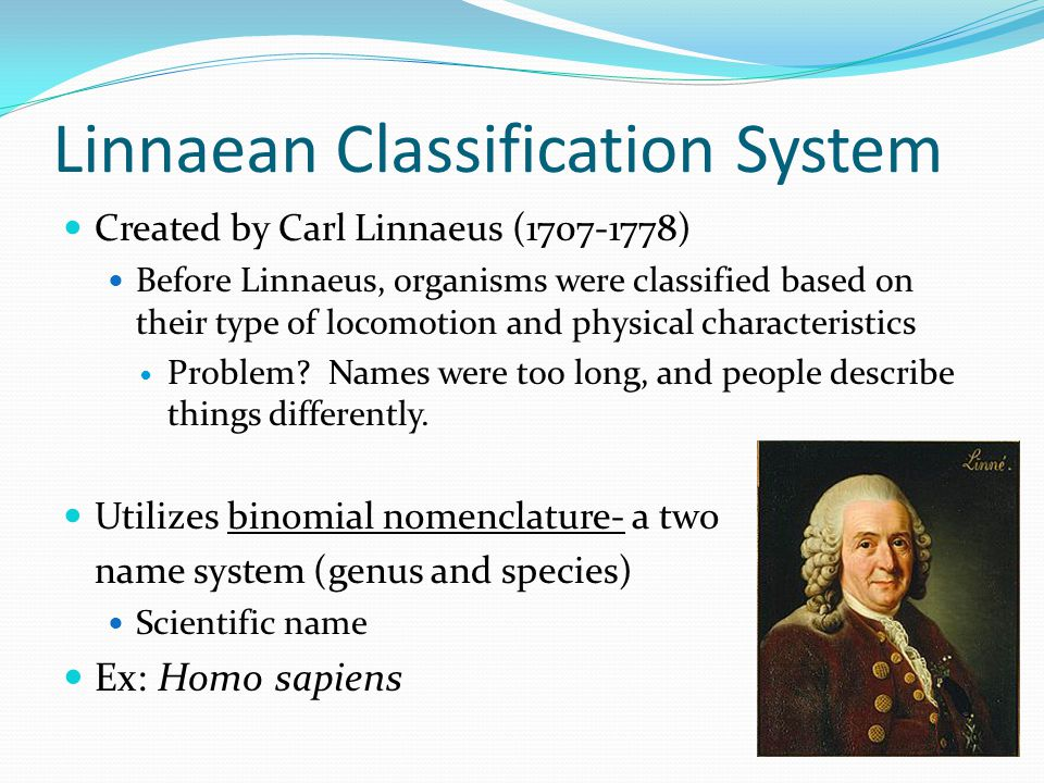 Linnaean Classification System Created by Carl Linnaeus (1707-1778) Before Linnaeus, organisms were classified based on their type of locomotion and p