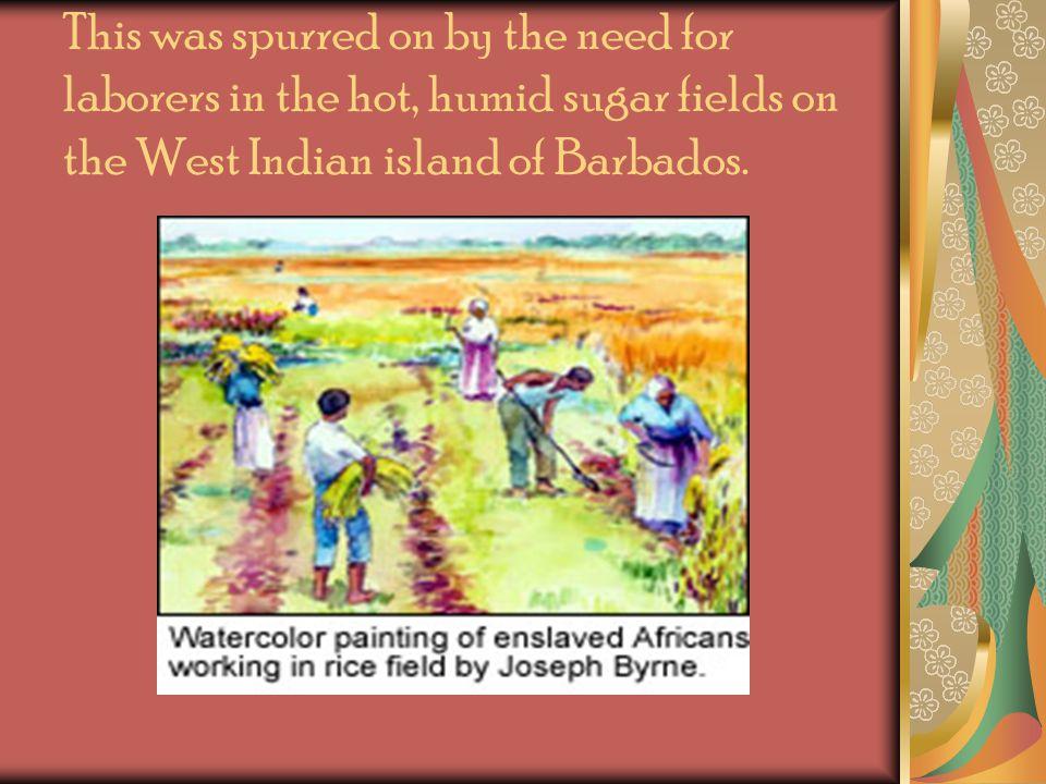 West Coast of Africa