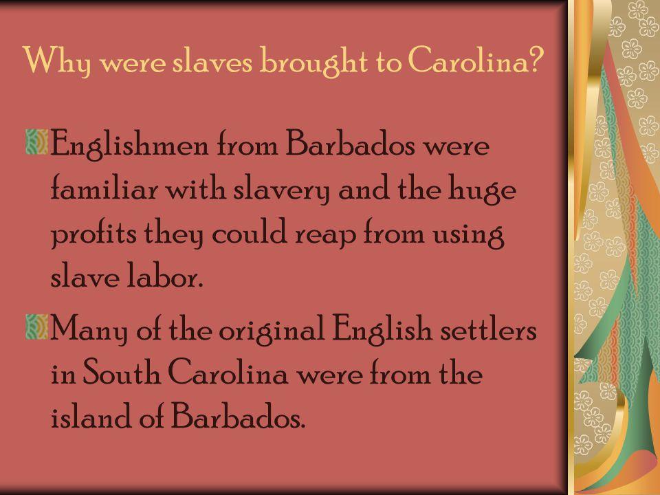 Answer…… Englishmen considered slavery an essential part of establishing successful cash crop plantations in South Carolina.