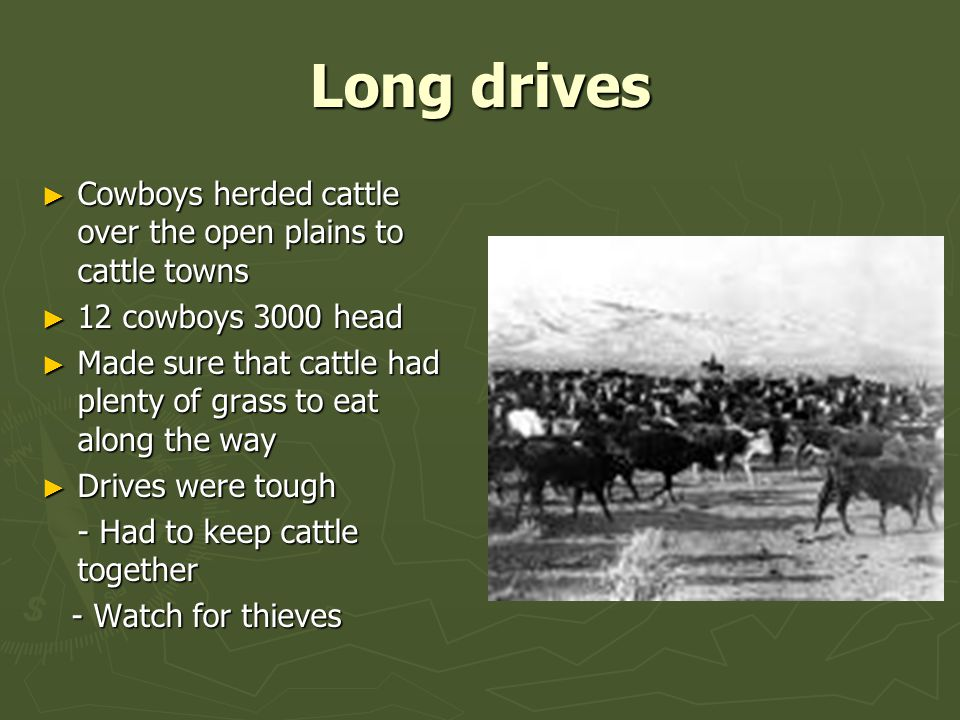 Long drives ► Cowboys herded cattle over the open plains to cattle towns ► 12 cowboys 3000 head ► Made sure that cattle had plenty of grass to eat along the way ► Drives were tough - Had to keep cattle together - Watch for thieves - Watch for thieves