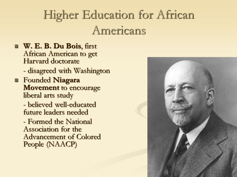 Higher Education for African Americans W.E. B.