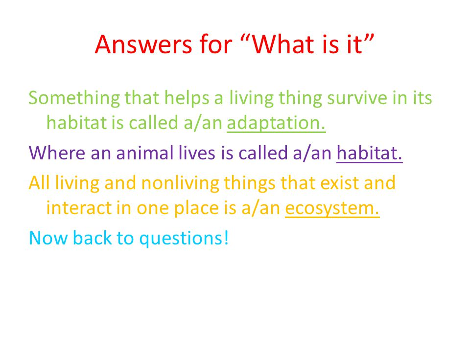 "Answers for ""What is it"" Something that helps a living thing survive in its habitat is called a/an adaptation. Where an animal lives is called a/an ha"