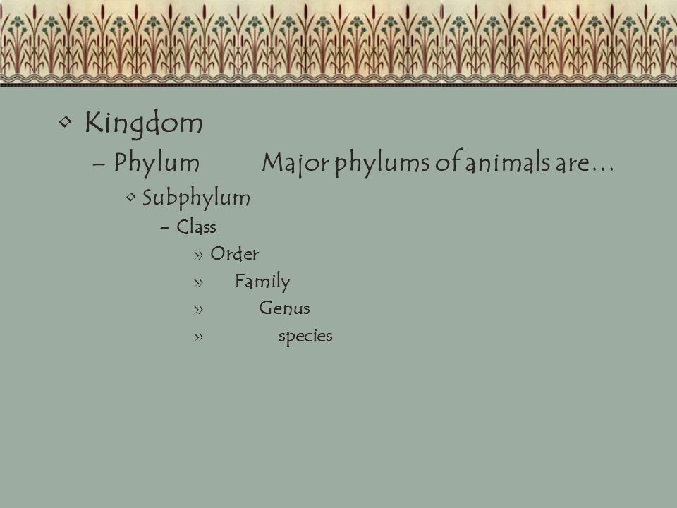 Kingdom –PhylumMajor phylums of animals are… Subphylum –Class »Order » Family » Genus » species