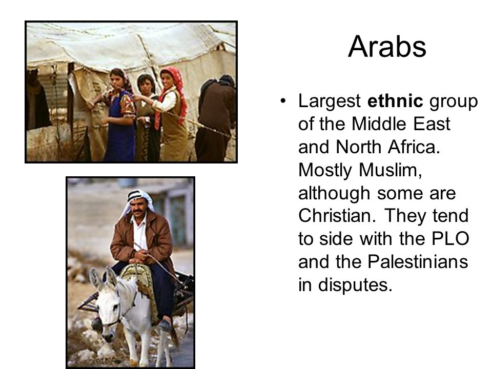 Arabs Largest ethnic group of the Middle East and North Africa. Mostly Muslim, although some are Christian. They tend to side with the PLO and the Pal