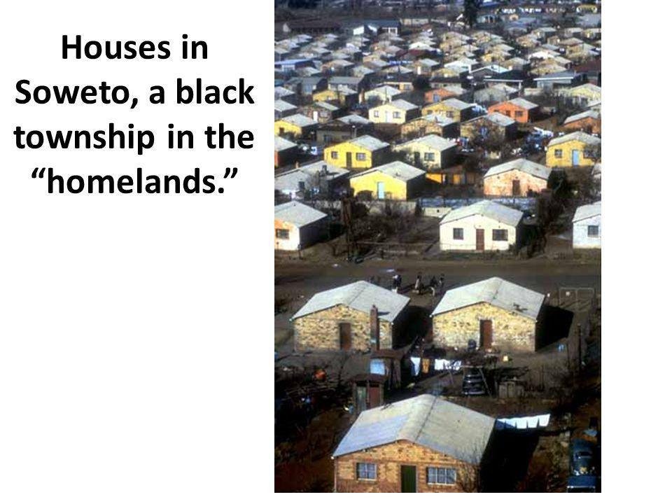 "Houses in Soweto, a black township in the ""homelands."""