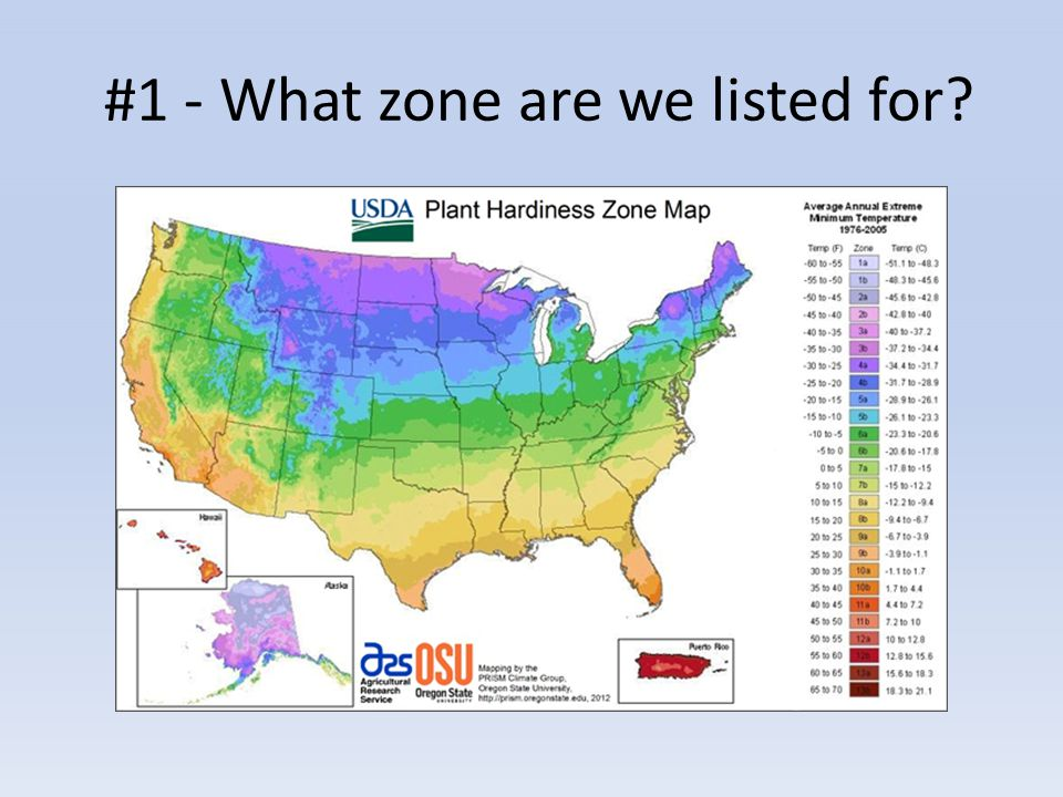 #1 - What zone are we listed for?