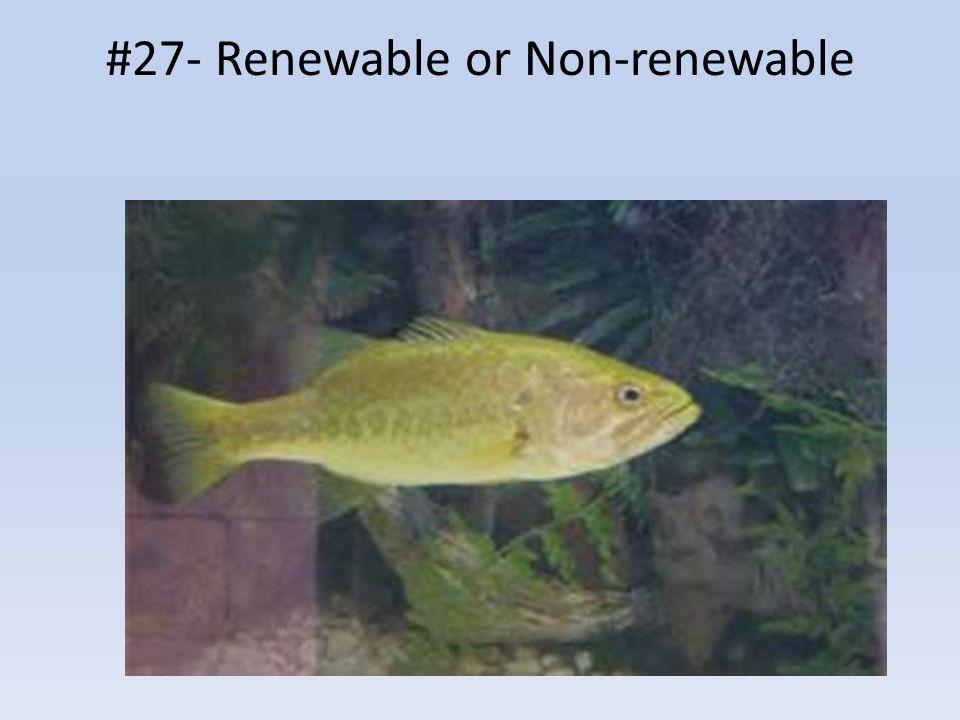 #27- Renewable or Non-renewable