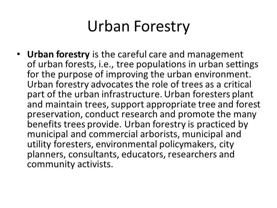 Historical Figures Forestry dates back to the Han and Ming Dynasties Improved management began in 16 th century Germany John Evelyn promoted the ideas of creating tree plantations [commercial tree use en masse] Jean-Babtiste Colbert was the first to utilize Evelyn's idea Schools of Forestry were established in 1825 Franklin B.