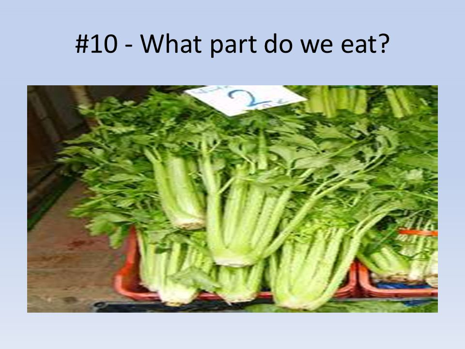 #10 - What part do we eat?