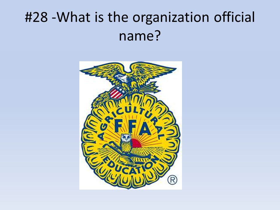 #28 -What is the organization official name?