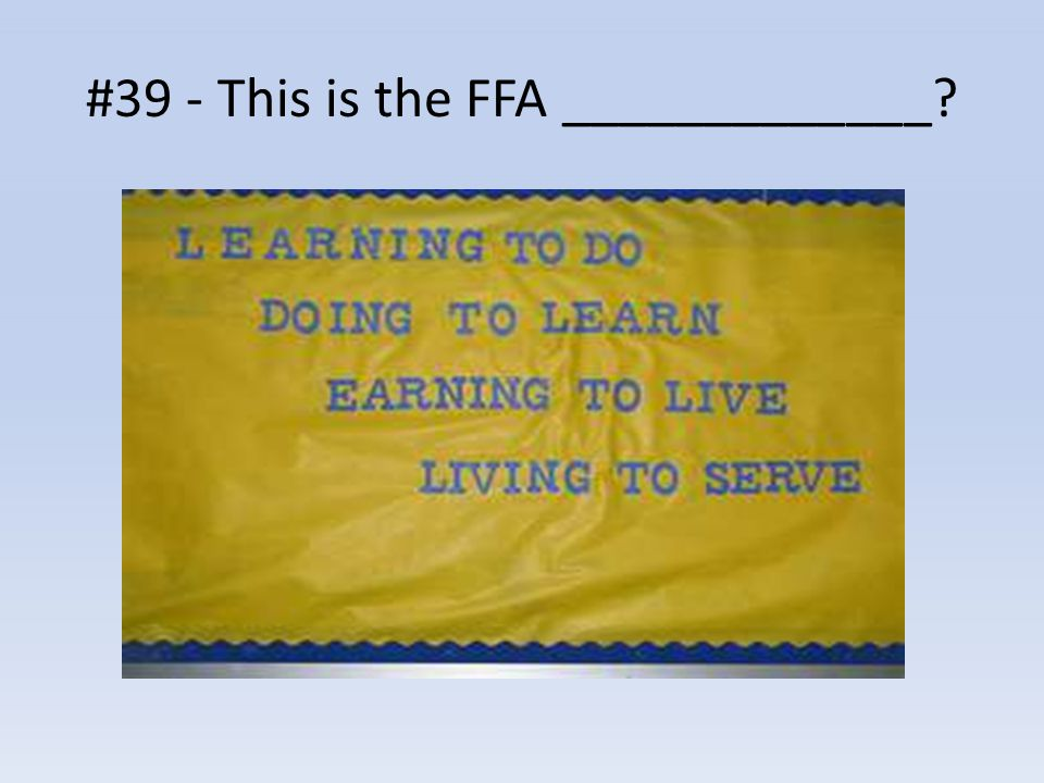 #39 - This is the FFA _____________?