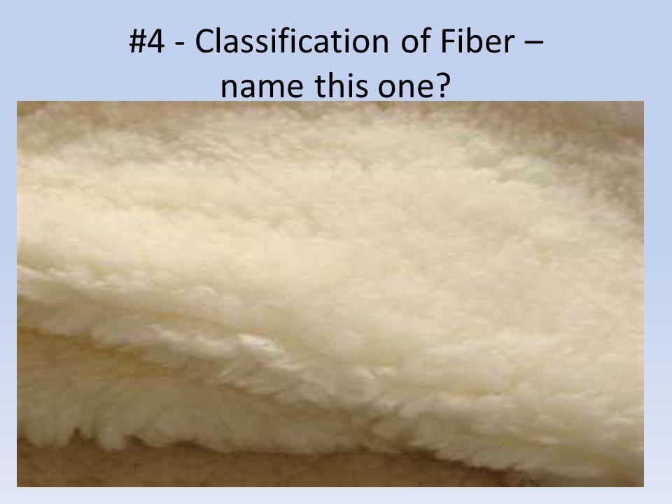 #15 - Vascular or Non-vascular?