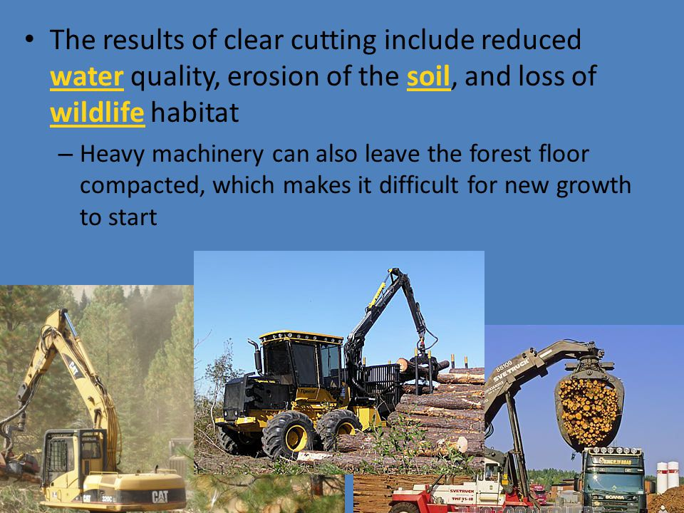 The results of clear cutting include reduced water quality, erosion of the soil, and loss of wildlife habitat – Heavy machinery can also leave the for