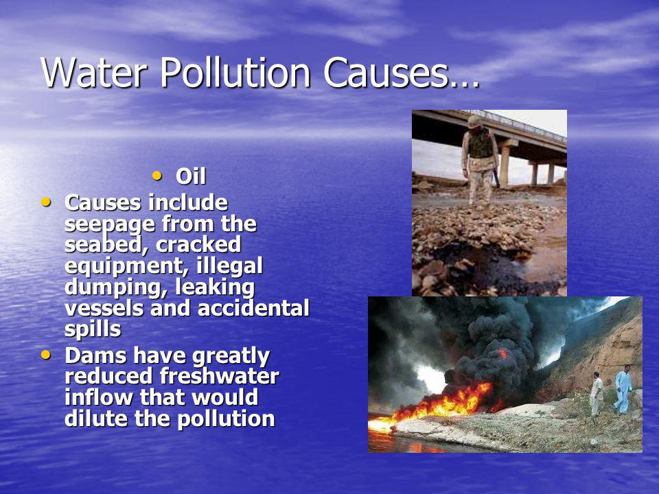 Water Pollution Causes… Oil Oil Causes include seepage from the seabed, cracked equipment, illegal dumping, leaking vessels and accidental spills Causes include seepage from the seabed, cracked equipment, illegal dumping, leaking vessels and accidental spills Dams have greatly reduced freshwater inflow that would dilute the pollution Dams have greatly reduced freshwater inflow that would dilute the pollution