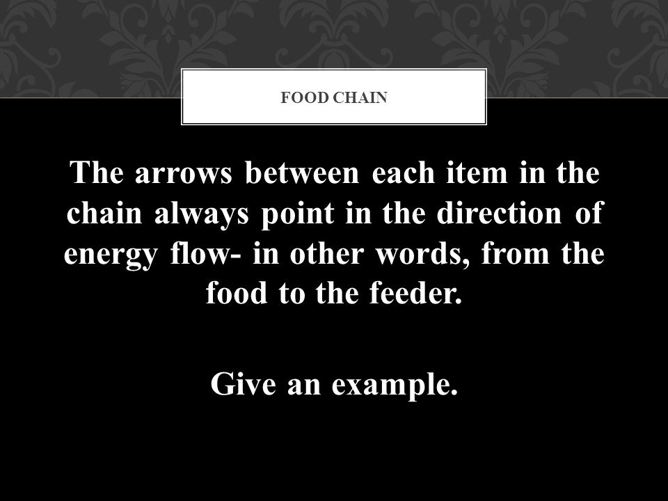 The arrows between each item in the chain always point in the direction of energy flow- in other words, from the food to the feeder. Give an example.