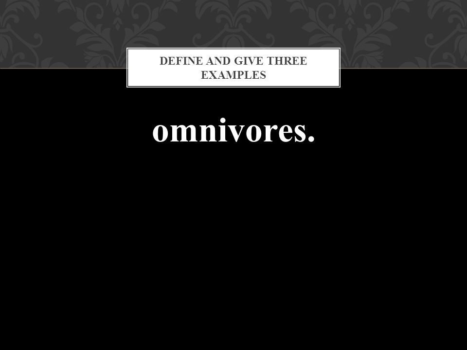 omnivores. DEFINE AND GIVE THREE EXAMPLES