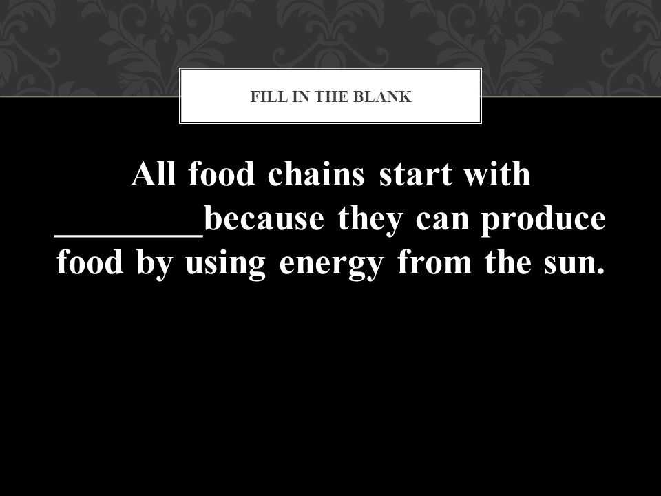All food chains start with ________because they can produce food by using energy from the sun. FILL IN THE BLANK